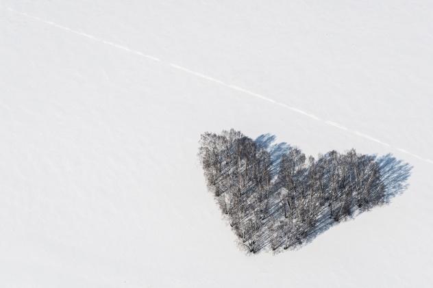 Зимнее сердце (Кемеровская область)