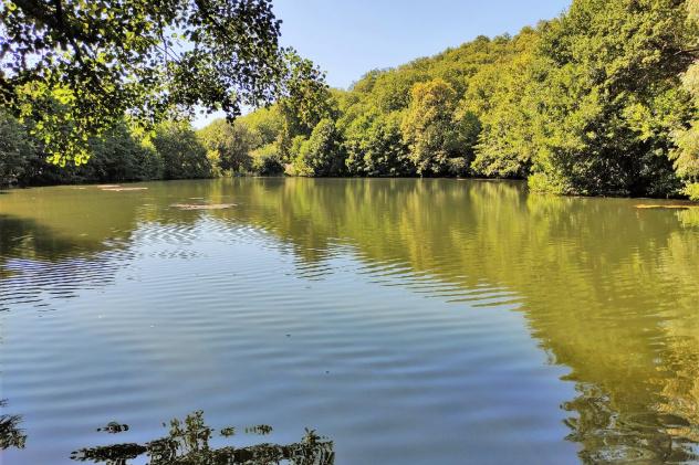 Андреевские пруды - жемчужины Кумысной поляны
