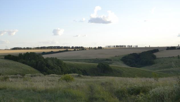Окрестности бывшего хутора Головин