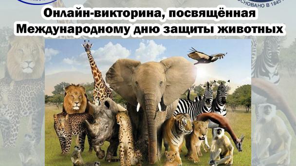 Об итогах онлайн-викторины, посвященной  Международному дню защиты животных