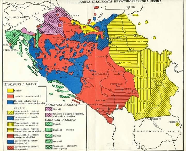 Стажировка в Сербии